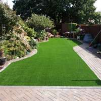 Bournemouth artificial grass