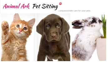 Photo by Animal Ark Pet Sitting & Dog Walking