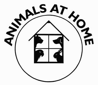 Photo by Animals at Home (National Forest) Ltd