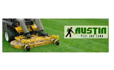 Photo by Austin Pest Control & Lawn Services Inc.