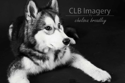 Photo by CLB Imagery