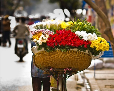 Photo by Luxury Travel Vietnam, LTD
