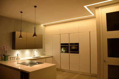 MS Lighting Design | Bark Profile and Reviews