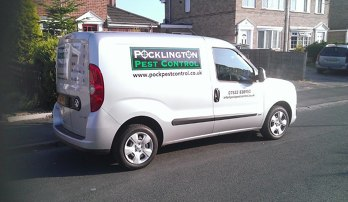 Photo by Pocklington pest control