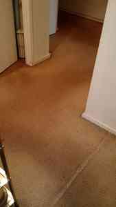 Photo by Preston Carpet Cleaner