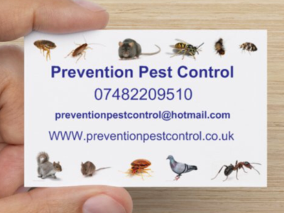 Photo by Prevention pest control