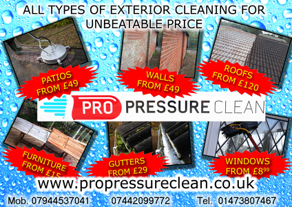 Photo by Pro Pressure Clean Services