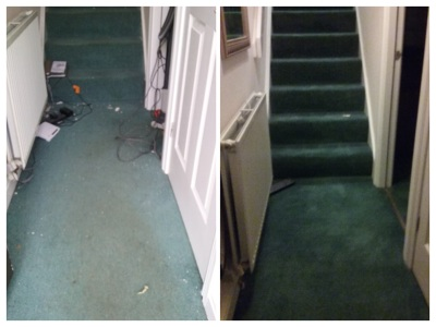 Photo by Probitas Carpet Cleaning
