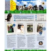 Doggee Daycare