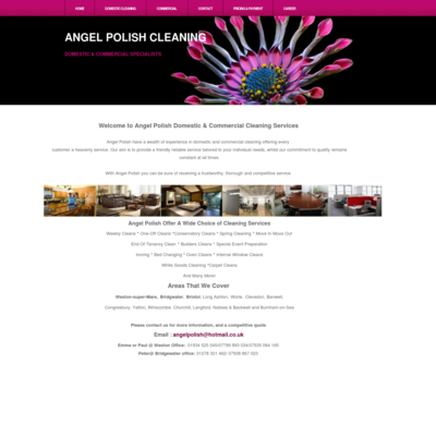 Angelpolish Cleaning