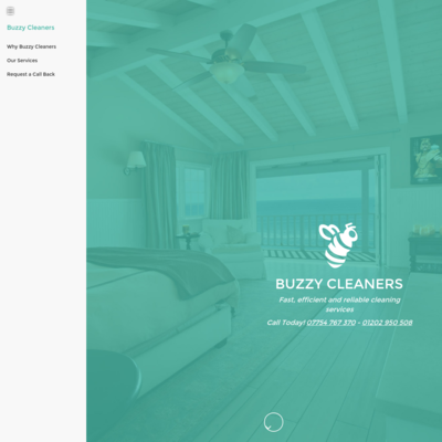 Buzzycleaners