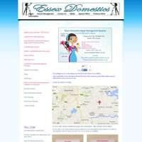 Essex Domestics