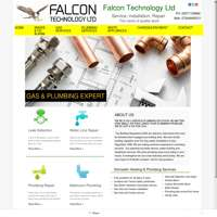 Falcon Technology Ltd