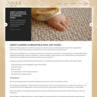 Natural Carpet Care
