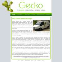 Gecko Cleaning logo