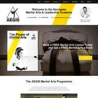 Aegis Martial Arts & Leadership Academy  logo