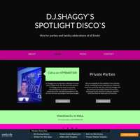 dj shaggys spotlight discos logo