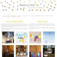 Blueberry Balloons logo
