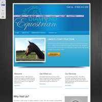 Diamond Equestrian & Embroidery Ltd logo
