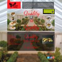 Bar Qauality Catering logo