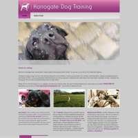 Harrogate Dog Training logo