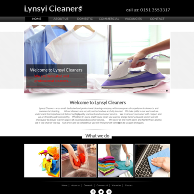 Lynsyl Cleaners
