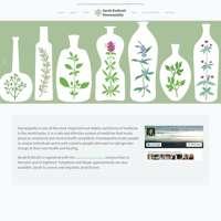 Sarah Endicott Homeopathy logo