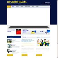 Dens carpet cleaning