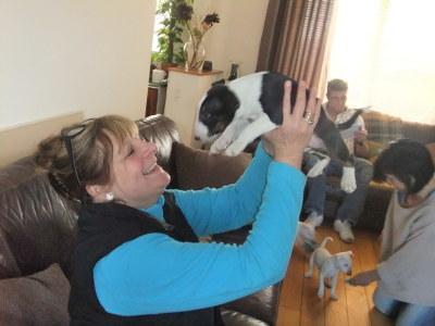 Photo by Sheffield Dog Training