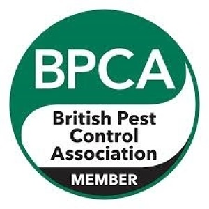 Photo by The Birmingham Pest Company