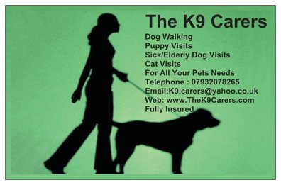 Photo by The K9 Carers