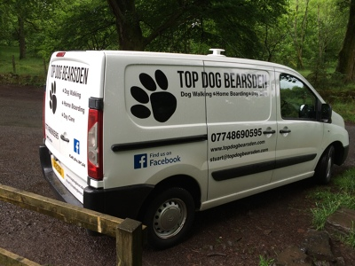 Photo by Top Dog Bearsden