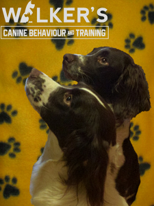 Photo by Walker's Canine Behaviour & Training