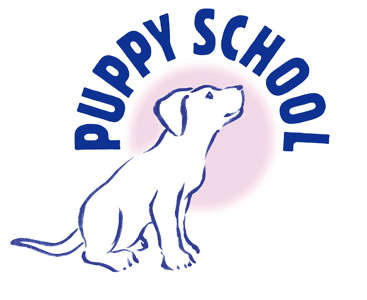 Photo by www.puppyschool.co.uk
